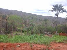 Foto relacionada com a empresa Vale Das Palmeiras