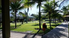 Foto relacionada com a empresa Salão de Assembléias das Testemunhas de Jeová - Amélia Rodrigues