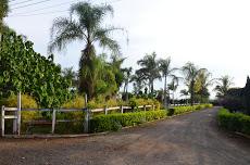 Foto relacionada com a empresa Fazendinha Greto Hotel