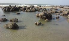Foto relacionada com a empresa Praia do Calhau