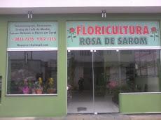 Foto relacionada com a empresa Floricultura Rosa de Sarom