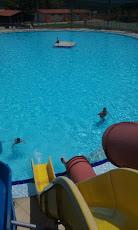 Foto relacionada com a empresa Hotel Fazenda Vista Linda