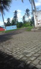 Foto relacionada com a empresa Mata de São João