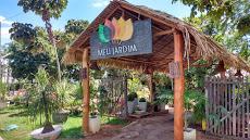 Foto relacionada com a empresa Meu Jardim Cariri ,Paisagismo E Jardinagem