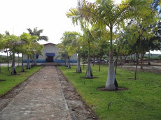 Foto relacionada com a empresa Escola Agrícola