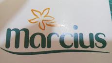 Foto relacionada com a empresa Marcius Line