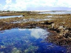Foto relacionada com a empresa janelas do mar