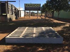 Foto relacionada com a empresa Panucci Pré-Moldados