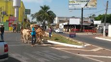Foto relacionada com a empresa Supermecado Rio das Pedras