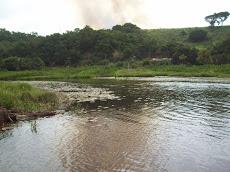 Foto relacionada com a empresa Colônia dos Pescadores