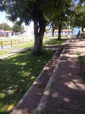 Foto relacionada com a empresa Banco Bradesco