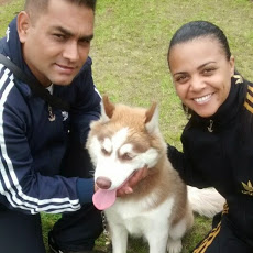 Foto relacionada com a empresa Torres Adestramento