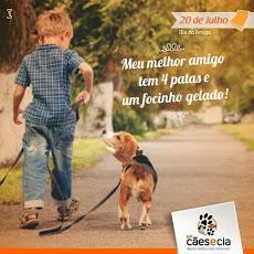 Foto relacionada com a empresa Pet Cães e Cia - Unidade Ouro Preto