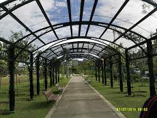 Foto relacionada com a empresa Parque Jefferson Péres