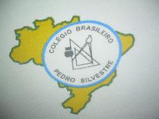 Foto relacionada com a empresa Colégio Brasileiro Pedro Silvestre