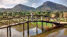 Foto relacionada com a empresa Parque Municipal São João - Pedra Dourada - MG