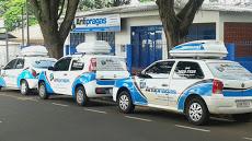 Foto relacionada com a empresa Antipragas Controle de Pragas Urbanas