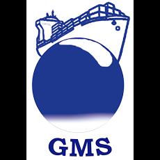 Foto relacionada com a empresa GMS