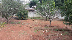 Foto relacionada com a empresa Pousada Fazenda Guartela