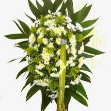 Foto relacionada com a empresa Flores Shop