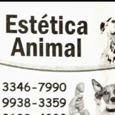 Foto relacionada com a empresa Estética Animal