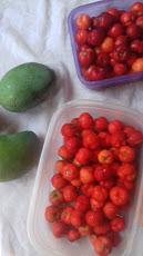 Foto relacionada com a empresa Festanny Alimentos