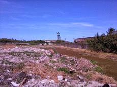 Foto relacionada com a empresa FSILVA Serviços Ambientais