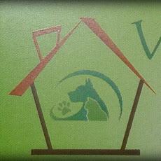 Foto relacionada com a empresa Casa Vet - Consultório Veterinário
