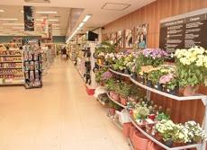 Foto relacionada com a empresa Supermercado Fortaleza Br