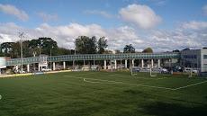 Foto relacionada com a empresa Trieste Stadium