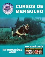 Foto relacionada com a empresa Ecosub Mergulhos