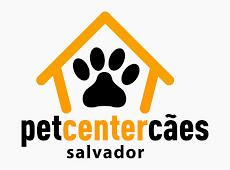 Foto relacionada com a empresa PCS - Adestramento de Cães Salvador