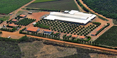 Foto relacionada com a empresa Agrobras Agrícola Tropical do Brasil