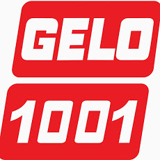 Foto relacionada com a empresa GELO 1001