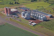 Foto relacionada com a empresa SL Cereais e Alimentos