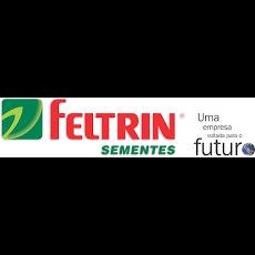 Foto relacionada com a empresa Feltrin Sementes