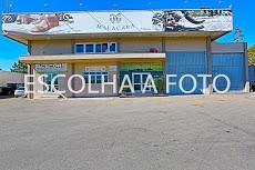 Foto relacionada com a empresa Malacara Faroupilha