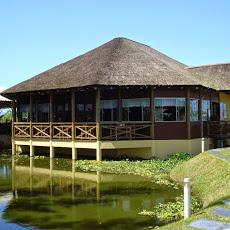 Foto relacionada com a empresa Restaurante e Petisqueira Polinésia