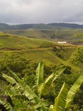 Foto relacionada com a empresa Jana Cabelos