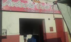 Foto relacionada com a empresa Avicola Boa Vista