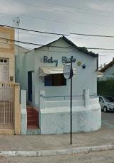 Foto relacionada com a empresa Baby Bicho