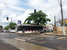 Foto relacionada com a empresa Restaurante Canto do Roxinho
